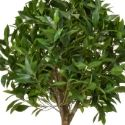 Artificial Bay Laurel Tree Tall **FREE UK MAINLAND DELIVERY**