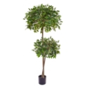 Artificial Ficus Fig Tree 'Retusa' Luxurious Quality + Highly Realistic **FREE UK MAINLAND DELIVERY**
