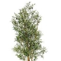 Artificial Olive Fruit Tree 180cm - Fire Retardant - Exceptional Quality **FREE UK MAINLAND DELIVERY**