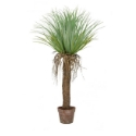 Artificial Palm Tree 'Cycas' Expertly Crafted + Extremely Life-like **FREE UK MAINLAND DELIVERY**