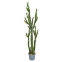 Artificial Potted Cactus 146cm | Expertly Hand-crafted | **FREE UK MAINLAND DELIVERY**