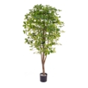 Artificial Schefflera Tree 180cm - Expertly Handcrafted & Deluxe Quality **FREE UK MAINLAND DELIVERY**