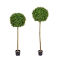 Artificial Topiary Buxus Single Ball Tree  **FREE UK MAINLAND DELIVERY**