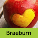 Bare root Braeburn Apple with heart cut into it