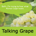 Talking Lakemont Eating Grape Vine