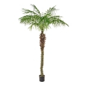 Artificial Palm Tree 'Phoenix' Superior Quality + Highly Realistic **FREE UK MAINLAND DELIVERY**