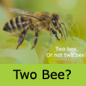 Perlette seedless grape two bee or not two bee